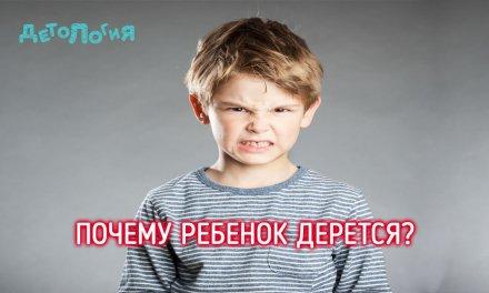 Почему ребенок дерется?
