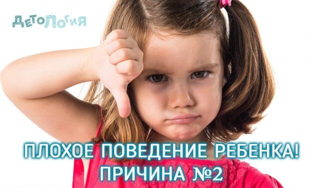 Причина плохого поведения ребенка №2