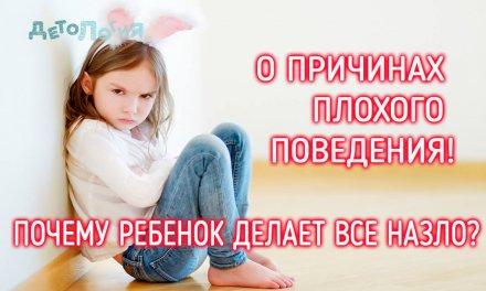 О причинах плохого поведения. Почему ребенок делает все назло?