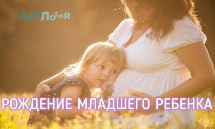 Рождение младшего ребенка в семье. Как подготовить старшего?